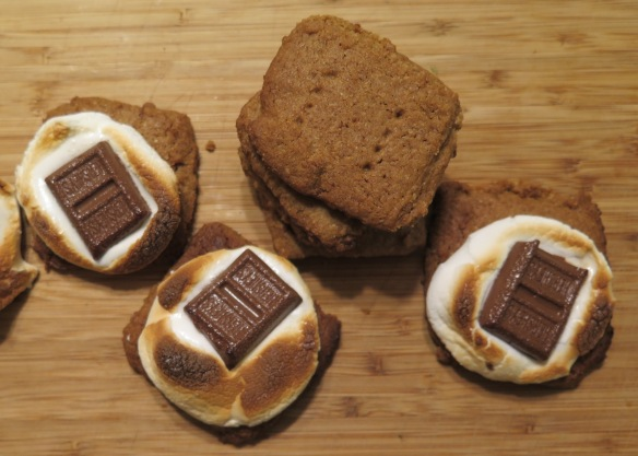 smores-and-homemade-graham-crackers-img_1692
