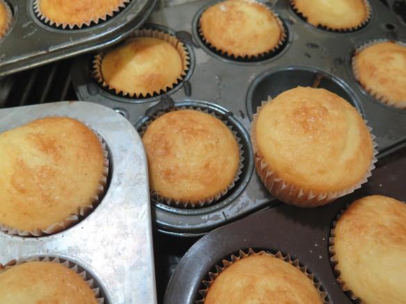 cupcakes-img_2687_1